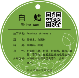 C:\Users\Administrator\Documents\美图图库\图片2.png
